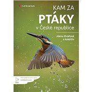 Kam za ptáky v České republice - Elektronická kniha