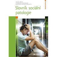 Slovník sociální patologie - Elektronická kniha