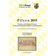 Pilsen 2015. Europas Kulturhauptstadt in tschechisch-deutscher Nachbarschaft - Elektronická kniha