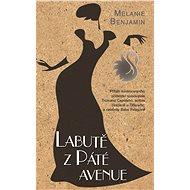 Labutě z Páté Avenue - Elektronická kniha