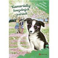 Kamarádky kouzelných zvířátek 3: Velké překvapení Evky Štětinkové - Elektronická kniha