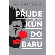 Přijde kůň do baru - David Grossman