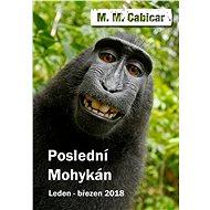 Poslední Mohykán - M. M. Cabicar