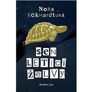 Sen letící želvy - Elektronická kniha
