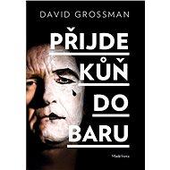Přijde kůň do baru - David Grossman