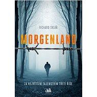 Morgenland - Za největším tajemstvím třetí říše - Elektronická kniha