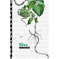 Běsa - Elektronická kniha