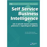 Self Service Business Intelligence - Elektronická kniha