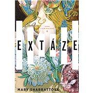 Extáze - Elektronická kniha