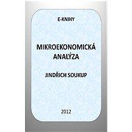 Mikroekonomická analýza - Elektronická kniha