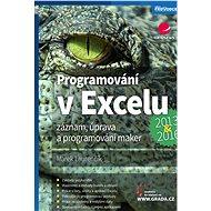 Programování v Excelu 2013 a 2016 - Elektronická kniha