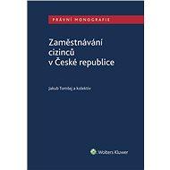Zaměstnávání cizinců v České republice - Elektronická kniha