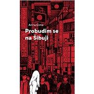 Probudím se na Šibuji - Elektronická kniha