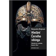 Hledání Černého vikinga - Elektronická kniha