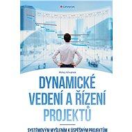 Dynamické vedení a řízení projektů - Elektronická kniha