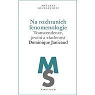 Na rozhraních fenomenologie - Elektronická kniha