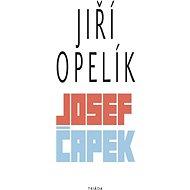 Josef Čapek - Elektronická kniha