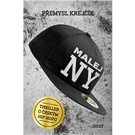 Malej NY - Elektronická kniha