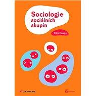 Sociologie sociálních skupin - Elektronická kniha