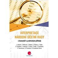 Interpretace Národní účetní rady - Elektronická kniha