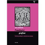 Pomáhající profese - Elektronická kniha