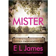 Mister - E L James, 504 stran