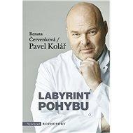 Labyrint pohybu - Elektronická kniha