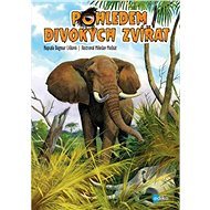 Pohledem divokých zvířat - Elektronická kniha