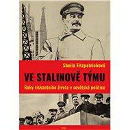 Ve Stalinově týmu - Elektronická kniha