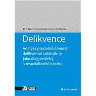 Delikvence - Elektronická kniha