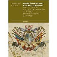 Krizový management barokní ekonomiky? - Elektronická kniha