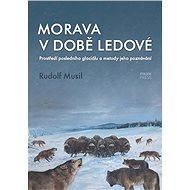 Morava v době ledové - Elektronická kniha