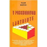 V poschodovom labyrinte - Elektronická kniha