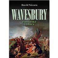 Wavesbury: Indiánské Vánoce - Elektronická kniha