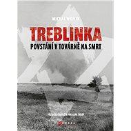 Treblinka: Povstání v továrně na smrt - Elektronická kniha