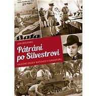 Pátrání po Silvestrovi - Jan Beránek