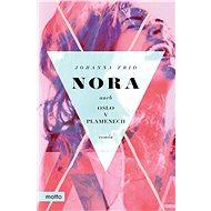Nora aneb Oslo v plamenech - Elektronická kniha