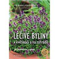 Léčivé byliny v květináči a na zahradě - Elektronická kniha