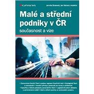Malé a střední podniky v ČR – současnost a vize - Elektronická kniha