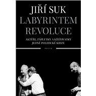 Labyrintem revoluce - Elektronická kniha