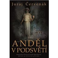 Anděl v podsvětí - Juraj Červenák, 464 stran