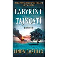Labyrint tajností - Elektronická kniha