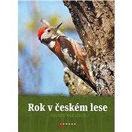 Rok v českém lese - Elektronická kniha