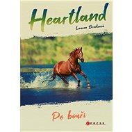 Heartland: Po bouři - Lauren Brookeová, 176 stran