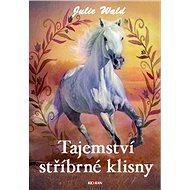 Tajemství stříbrné klisny - Julie Wald, 224 stran