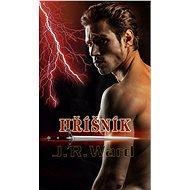 Hříšník - Elektronická kniha