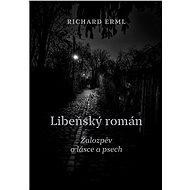 Libeňský román - Elektronická kniha