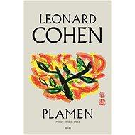 Plamen - Elektronická kniha