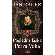 Poslední láska Petra Voka - Elektronická kniha