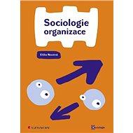 Sociologie organizace - Elektronická kniha